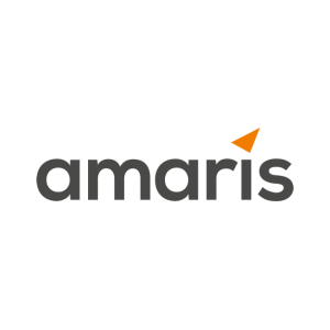 HRMS TECHNO- FUNCTIONAL CONSULTANT WITH OAF at amaris ...