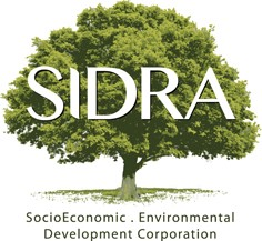 Sidra LLC Careers (2019) - Bayt com