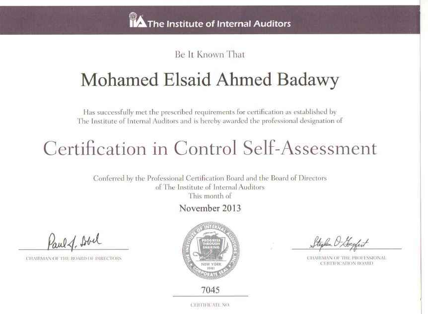 Mohamed Alsaid Badawy CIA CISA CCSA CRMA CertIFR - Bayt.com