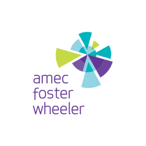 PMC Project Director at Amec Foster Wheeler - United Arab