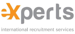 Application Developer - QLIK at Experts International