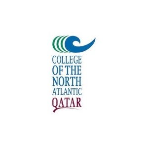 Government and Immigration Specialist (Qatari only) at College of