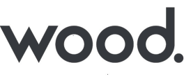 Smart Plant Instrumentation Designer / SPI Designer at Wood ...